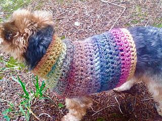 Simple Small Dog Sweater pattern by RaeLynn Endicott