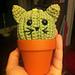 Cat Cactus pattern
