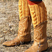Waterlily Leg Warmers pattern