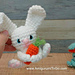 Carrot Hugging Bunny pattern