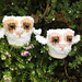 Little Owls - Oliver and Olivia pattern