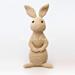 Pixie The Rabbit Amigurumi pattern
