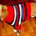 Saba's Doggie Sweater pattern