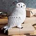 Hedwig pattern