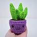 Happy Snake Plant pattern
