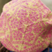 Kelvingrove Beret pattern