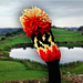 Golf Club Cover ~ Great Golf Balls of Fire! pattern