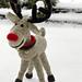 Run, Run Rudolph pattern