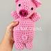 Barnyard Babies Pig Edition pattern