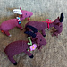 Ziege - Goat pattern