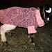 Baby Goat Sweater, in the round pattern