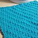 Diagonal Braid Dishcloth pattern