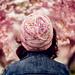 Sherbert Blossom pattern