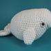 amigurumi beluga whale pattern