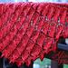 Carmina Florum Lace Shawl pattern