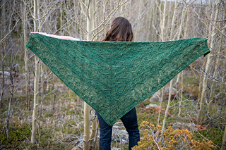 This pattern comes with instructions for two shawl shapes. This is the triangle shape.