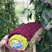 Bellissima Blanket pattern