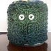 Owl Mug Cosy for Teacher pattern