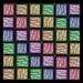 LFM Rainbow Zebra Stripes Throw pattern