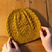 Beanstalk Hat pattern