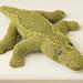 Zach the Crocodile pattern