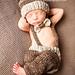 Cuddly Colt Set-Knit pattern