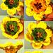 3-Way Flower Crchet Pattern pattern