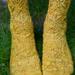 Mont Royal Socks pattern
