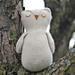 Dreamy Owl pattern