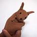 Kangaroo & Joey pattern