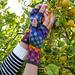 Mosaic Happy Fingerless Gloves pattern