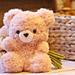 Fluffle the Bear pattern
