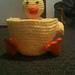 Basket Buddy Duck pattern