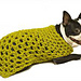 Granny Square Dog Sweater pattern