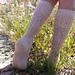 Primrose Socks pattern