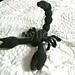 Scorpion noir pattern