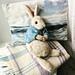 Peter Rabbit pattern