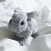 Little Baby Bunny pattern