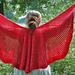 Hibiscus Rose Shawl pattern
