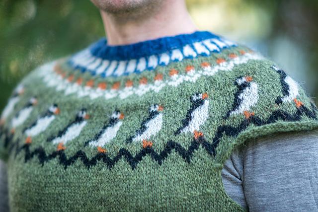 Безрукавый свитер лопапейса