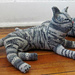 Nuvo the Gray Tabby pattern