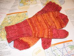 Stormy's Forepaw Socks