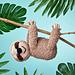 Lazy Daze Sloth pattern