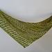 Wendy's Fern pattern