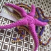 Starfish and Brittle Star pattern