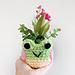 Froggy Mini Planter pattern