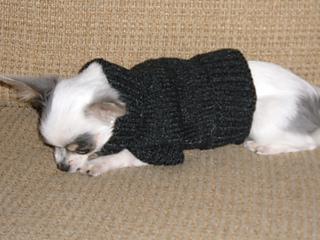 Maci's Sweater 2