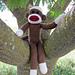 Maxwell the Machine Knit Sock Monkey pattern