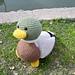 Drake the Mallard Duck pattern