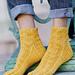 Limneus stagnalis Sock pattern